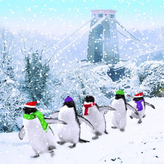 Penguins in Bristol