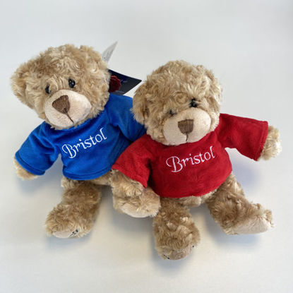 Picture of Bristol Bears
